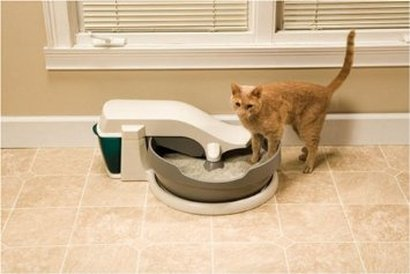 PetSafe Simply Clean Continuous-Clean Litter Box Review